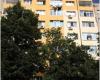 Държавата дава 5 млн за енергийна ефективност