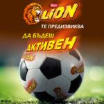 Lion-football-turnir_01